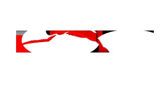 logo passion detailing 77